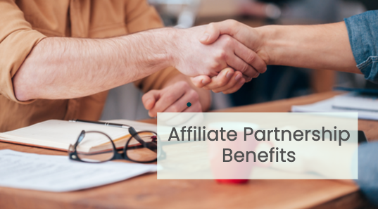 Affiliate B2B Partnerships Will Supercharge Your Business! Part 2
